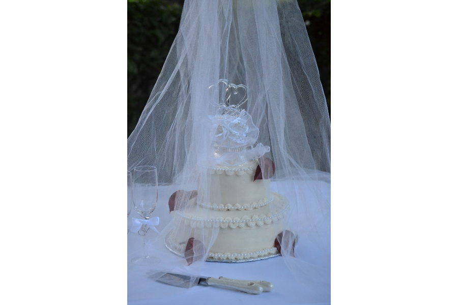 wedding cake with netting